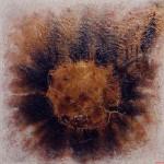 "255 - 85 x 85 - ""Schwarzer Komet"" - Farb-, Materialcollage - 2001"